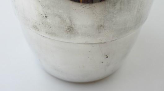vi-meridional-pitcher